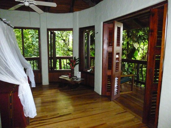 Playa Nicuesa Rainforest Lodge : room