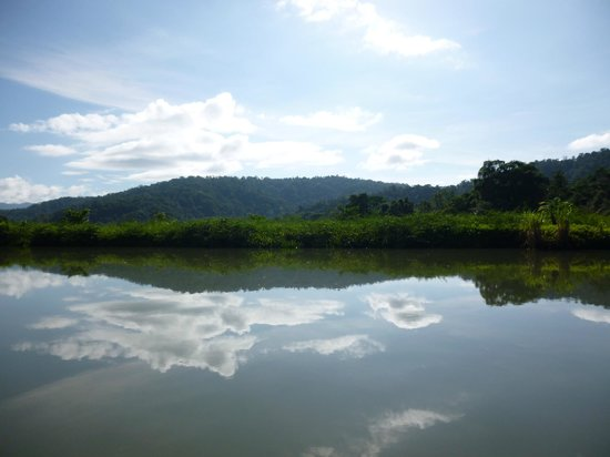 Playa Nicuesa Rainforest Lodge: river tour