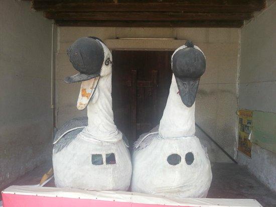 Chen Ci Hong Mansion: Family Swans