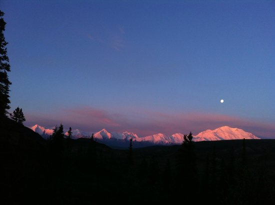 Camp Denali: Aplfenglow - moon 3:30am view from our cabin