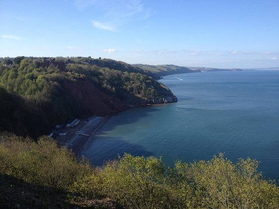 Babbacombe Palms Guest House: Babbacombe Downs