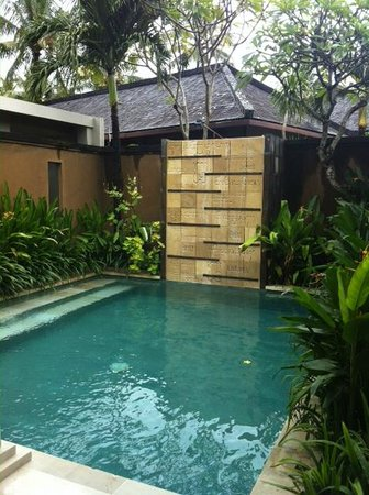 Ahimsa Beach Resort: Ahimsa private pool