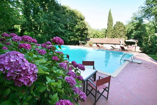 Casa Vacanze Il Frantoio: La nostra piscina, immersa in un panorama mozzafiato, si dimostra sempre più apprezzata dai nost