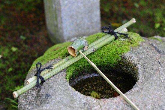 Tsukino Koigokoro: 敷地