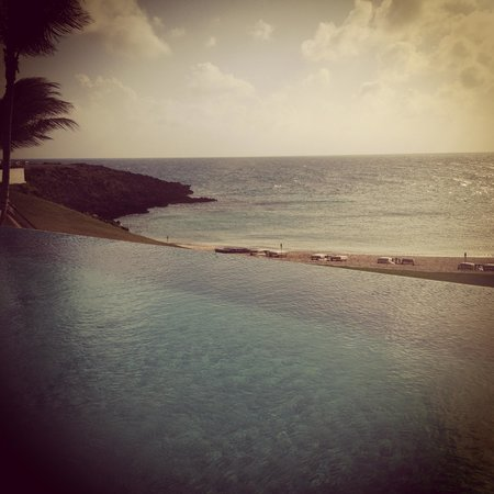 The Cove Eleuthera : Love