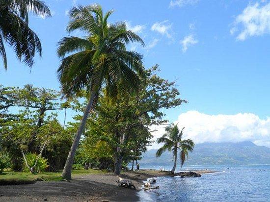 Paul Gauguin Museum: Gardens and beach