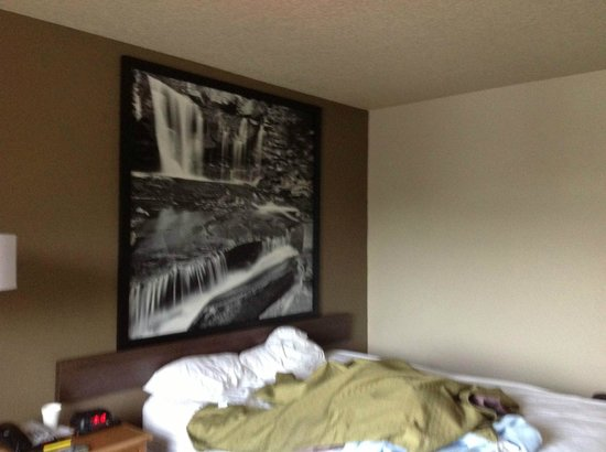 Super 8 Dunbar/Charleston Area : Again pic above bed!