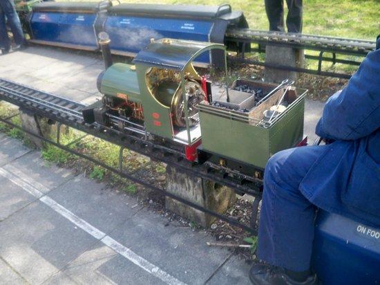 Abbotsfield Park Miniature Railway: Steam Locomotive