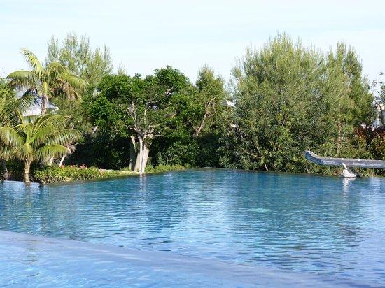 Barcelo Asia Gardens Hotel & Thai Spa : JARDIN ET PISCINE