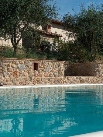 La Rotonda in Chianti: particolare piscina