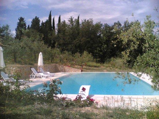 La Rotonda in Chianti: Piscina