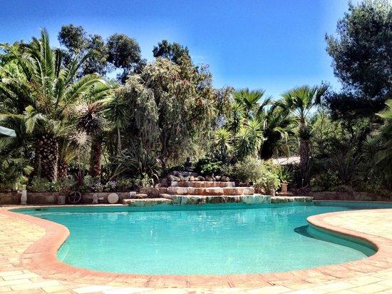 Salsalito: Pool area