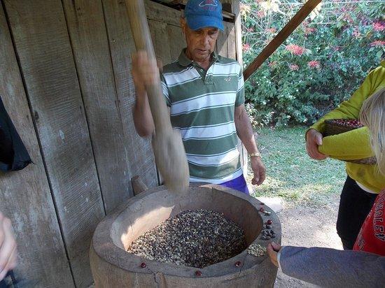Santa Elena Cooperative Coffee Tours: Sådan her gjorde man i gamle dage