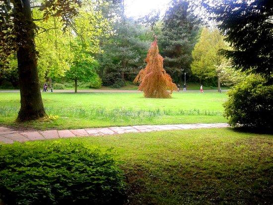 Deutsch-Französischer Garten: From pathway