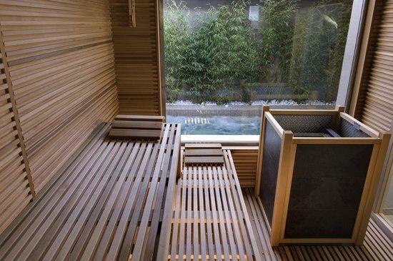 إيسبلاناد تيرجستيو: Finnish sauna
