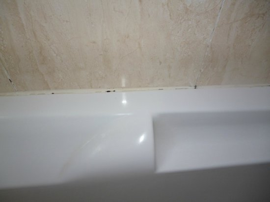Asian Ruby Park View Hotel: mildew  around bath