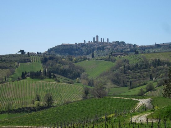 Fattoria Poggio Alloro: A view from the terrace with the towers of San Gimignano on the hill
