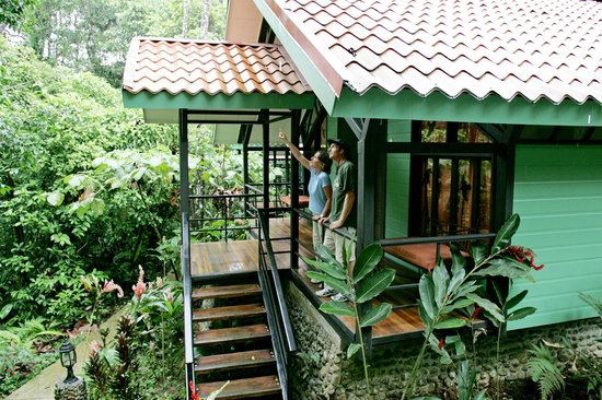 Rainforest Adventure Lodge: 10 moderns bungaloes