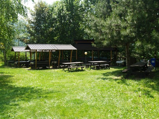 Residence Aparthotel Des Alpes: zona barbecue