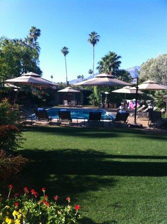 Desert Riviera Hotel: .