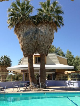 29 Palms Inn: Pool and Dining area