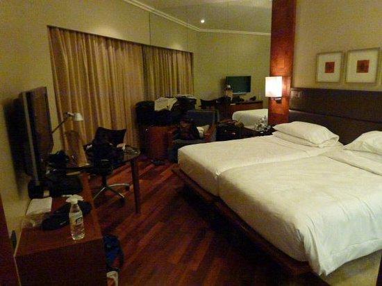 Hyatt Regency Delhi: room