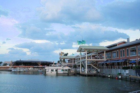 American WaterSports : Bayside Marketplace