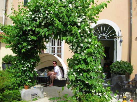 Hotel Novecento: lovely relax garden
