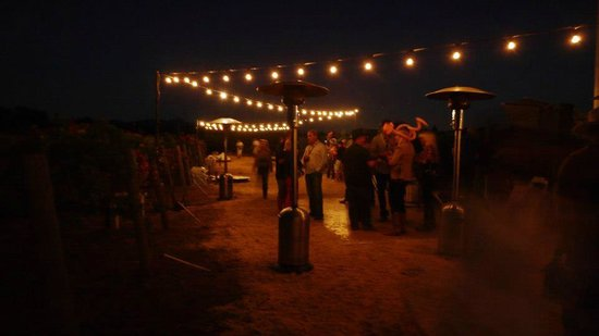 Vintner's Collective: fun events