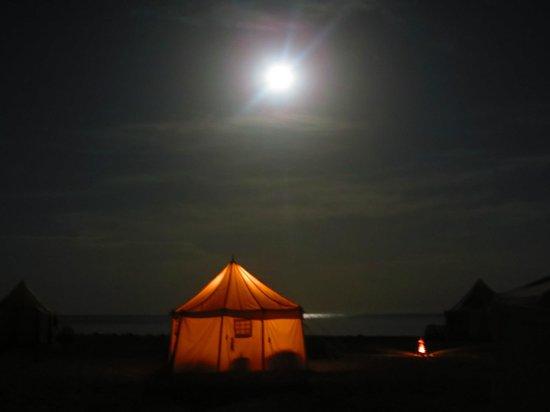 Marsa Shagra Village: luna piena