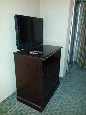 Comfort Suites Near Texas A&M-Corpus Christi: Flat screen