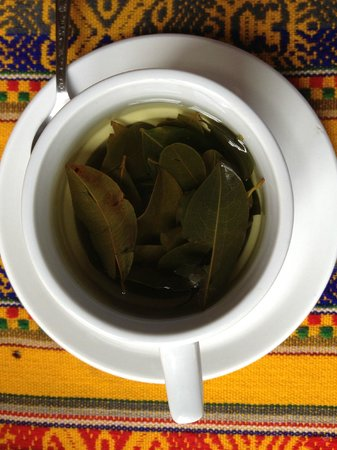 Casa de Mama Cusco-The Treehouse: Coca tea at Casa de Mama