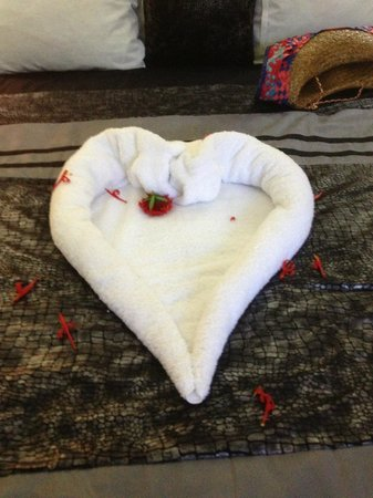 Seastar Inn: Gorgeous towel origami