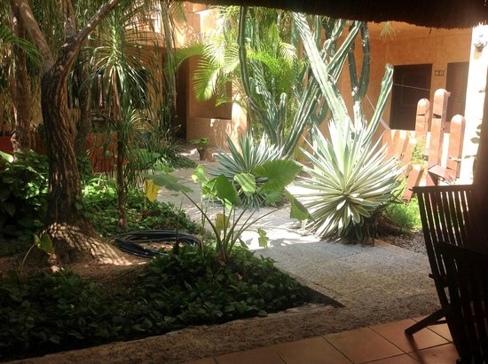 Barrio Latino Hotel: Vista do Jardim