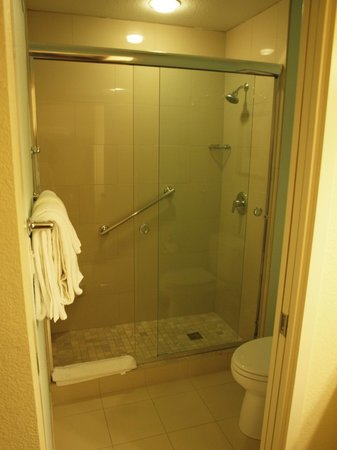 Hyatt House Pleasanton : Walk-in shower