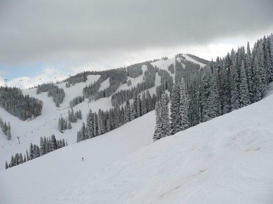 Aspen Snowmass: pista
