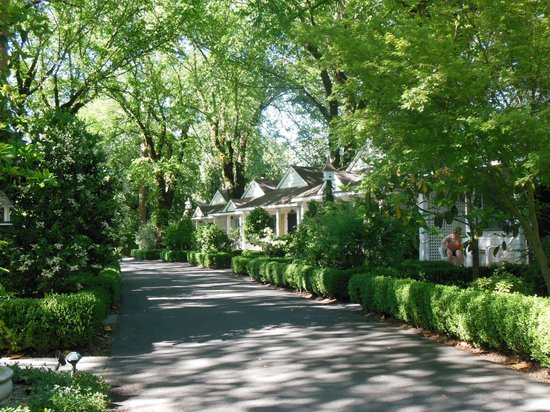 Cottage Grove Inn : The idyllic lane in front of the cottages