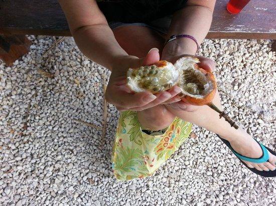 Grand Palladium Kantenah Resort & Spa: Passion fruit - eat some