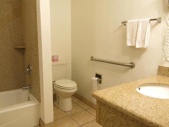 Americas Best Value Inn & Suites-Clovis/Fresno: the bathroom