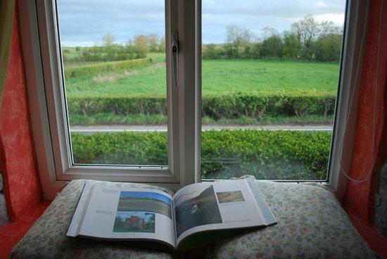 Havyatt Cottage B&B: Beautiful window seat and awesome view!