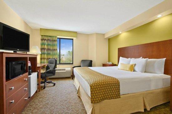 Ramada Marietta/Atlanta North: King Size Room