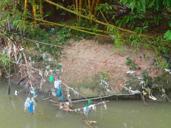 trash at the parque do mindu manaus may 2013 foto de parque do