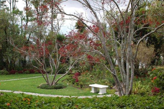 La Posada del Quinde: Lovely garden area