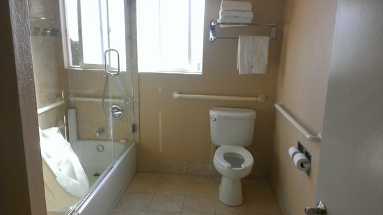 Hotel Indigo San Diego Del Mar: bathroom