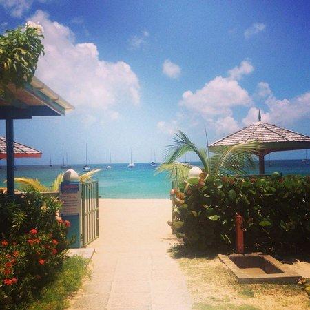 Bay Gardens Beach Resort: Right on the beach! Perfect!
