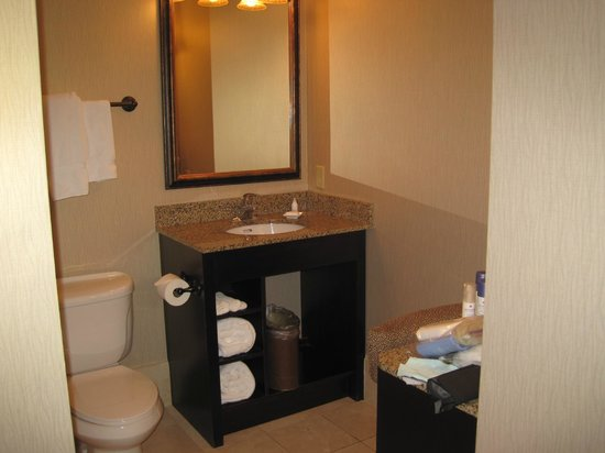 Hawthorn Suites by Wyndham West Palm Beach: Clean bathroom and separate make-up desk / mirror