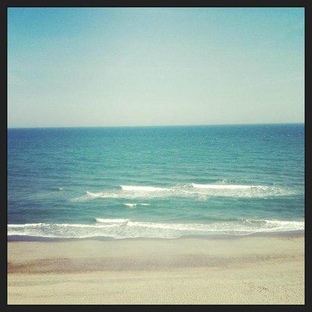 Island Vista: May 2013