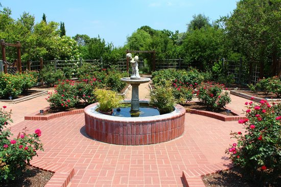Fountain At The Rose Garden Picture Of San Antonio Botanical Garden San Antonio Tripadvisor
