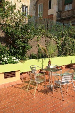 Downtown Hostel: Terrace