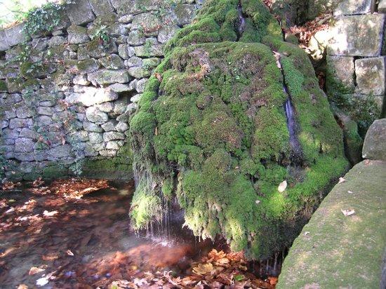 Chateau de la Riviere: Bain des Dames